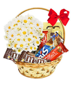 cesta apaixonado por chocolate